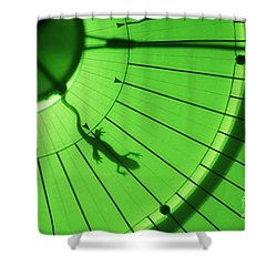 Newt In Magnetic Field Shower Curtain by James L. Amos