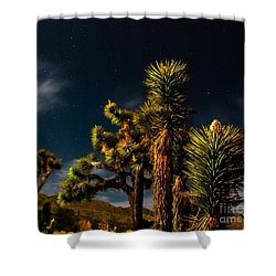 Night Desert Shower Curtain