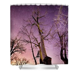 1 Night To Day Shower Curtain