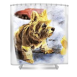 Norwich Terrier Fire Dog Shower Curtain by Susan Stone