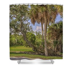 Shower Curtain featuring the photograph Oak Trees by Jane Luxton