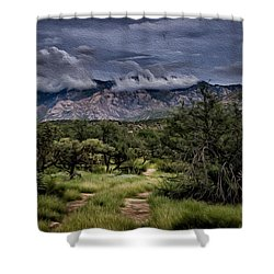 Odyssey Into Clouds Oil Shower Curtain