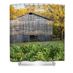 Old Tobacco Barn Shower Curtain by Brian Jannsen