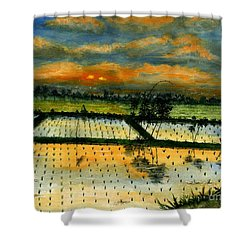 On The Way To Ubud Iv Bali Indonesia Shower Curtain