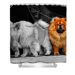 One Of A Kind Shower Curtain
