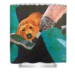 Shower Curtain featuring the painting One Team Two Heroes - 1 by Donald J Ryker III