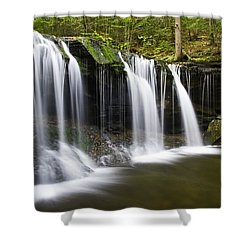 Oneida Falls Shower Curtain