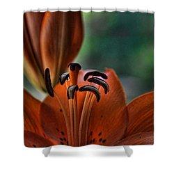 Orange Lilly  Shower Curtain by Saija  Lehtonen