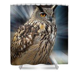 Owl Alba Spain  Shower Curtain