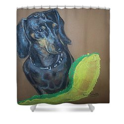 Ozzie Dashound Shower Curtain