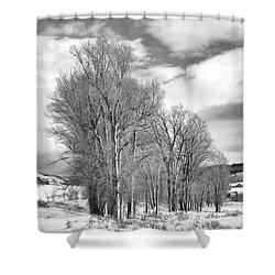 Peaceful Moments Shower Curtain by Sandra Bronstein