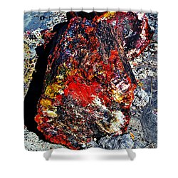 Petrified Wood Log Rainbow Crystalization At Petrified Forest National Park Shower Curtain