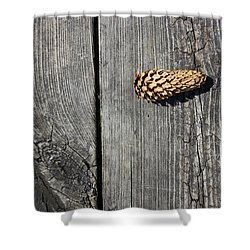 Pine Cone And Old Wood 2 Shower Curtain
