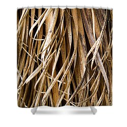 Plant Details Shower Curtain by Tim Hester