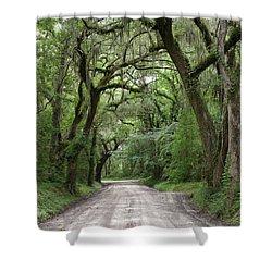 Plantation Road II Shower Curtain
