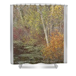 Pondside Pastel Shower Curtain