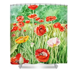 Poppies Shower Curtain by Irina Sztukowski