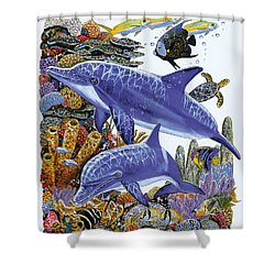 Porpoise Reef Shower Curtain by Carey Chen