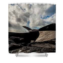 Propeller On The Beach Shower Curtain