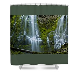 Proxy Falls Shower Curtain by Nick  Boren