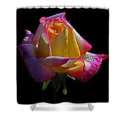 Rainbow Shower Curtain by Doug Norkum
