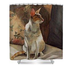 Raja Shower Curtain