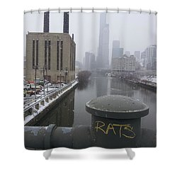 Rats Shower Curtain