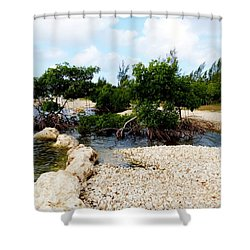 Shower Curtain featuring the photograph Reclamation 6 by Amar Sheow