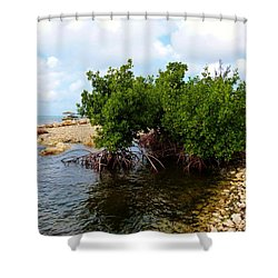 Shower Curtain featuring the photograph Reclamation 7 by Amar Sheow