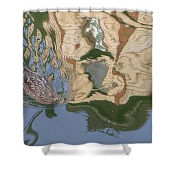 Shower Curtain featuring the photograph Reflection Mill by Nora Boghossian