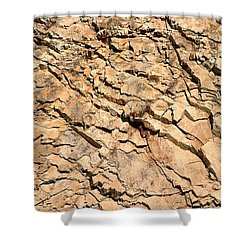 Shower Curtain featuring the photograph Rock Wall by Henrik Lehnerer