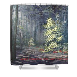 Roena King - Christmas Light Shower Curtain
