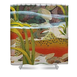 Salmon Shower Curtain by Katherine Young-Beck