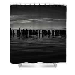 Salton Sea Piles Shower Curtain