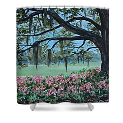 Savannah Spring Shower Curtain by Stanton Allaben