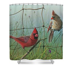 Shower Curtain featuring the painting Scarlet by Mike Brown