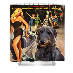 Scottish Deerhound Art - La Dolce Vita Movie Poster Shower Curtain by Sandra Sij