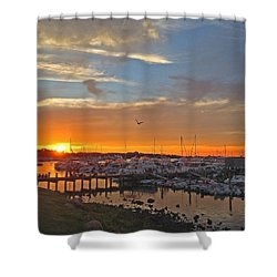 Seagull Sunset Shower Curtain by Todd Breitling