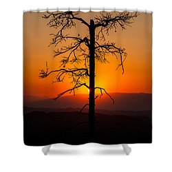 Serenity Shower Curtain by Davorin Mance