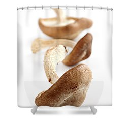 Shiitake Mushrooms Shower Curtain by Elena Elisseeva