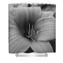 Single Spring Flower Shower Curtain