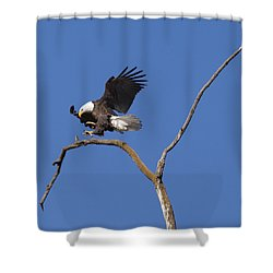 Smooth Landing 5 Shower Curtain by David Lester