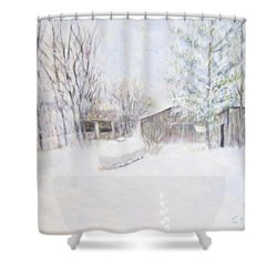Snowy February Day Shower Curtain