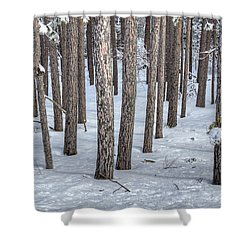 Snowy Woods Shower Curtain by Donna Doherty