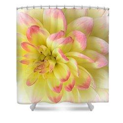 Softness Shower Curtain by Kathleen Struckle