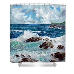 Solitude Shower Curtain by Philip Lee