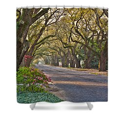 South Boundary In Spring Shower Curtain