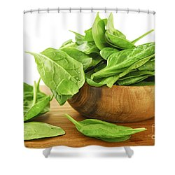 Spinach Shower Curtain by Elena Elisseeva