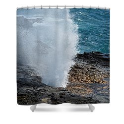 Spouting Horn Shower Curtain