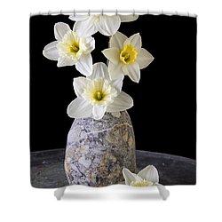 Spring Daffodils Shower Curtain by Edward Fielding